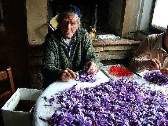 Agriturismo Il Vecchio Maneggio: dice nonno mario:un par de cogl...ni!!!