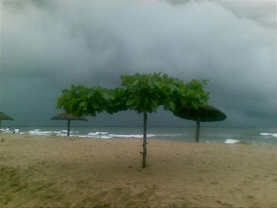 Vypin Island, India: The Beach