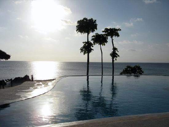 Dolphin Beach Resort : vista dalla piscina