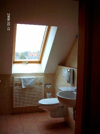 Hotel Landgasthof Hofmeier: bathroom