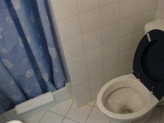 Hotel Restaurant l'Oasis : room 3 toilet