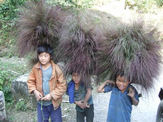อรุณาจัลประเทศ, อินเดีย: Kids near Daporijo