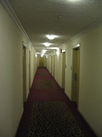 Howard Johnson Hotel and Suites Victoria Elk Lake : Tidy halls