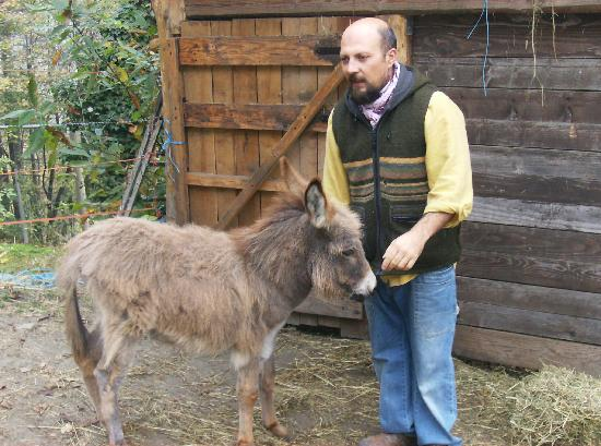 B&B San Bernardo : Gianni with baby donkey