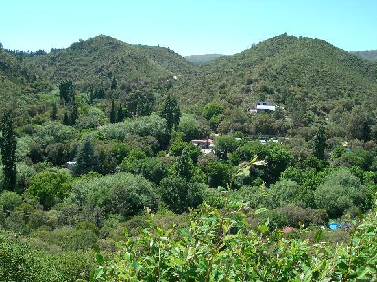 La Loma Cabañas & Suites: View from Cabin at La Loma