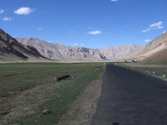 Ladakh, India: Moore Plains