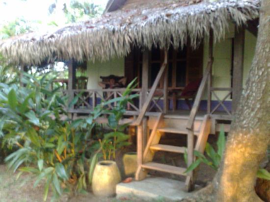 Bon Ton Resort : yellow orcid