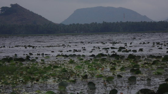 Visakhapatnam (Vizag), India: kondakarla