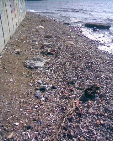 Hotel Galini Palace: Playa sucia delante del hote, una lastima.