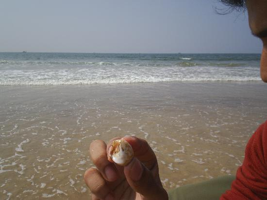 Ratnagiri, Indien: beautiful beach