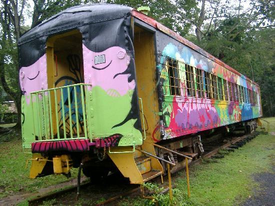 Summit Botanical Gardens: Railroad car