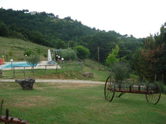 Semidimela: pool+surroundings