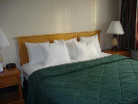 كومفورت إن آند سويتس: king bed