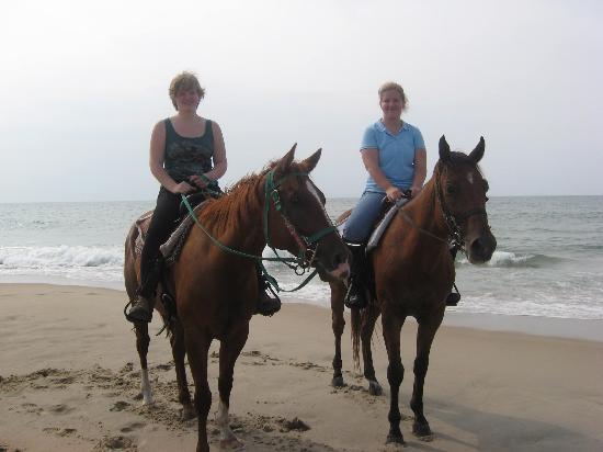 Equine Adventures Resmi