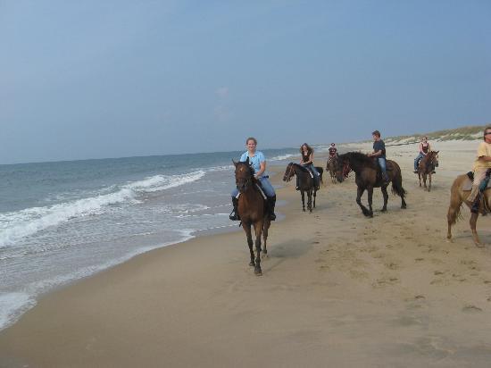 Equine Adventures صورة فوتوغرافية