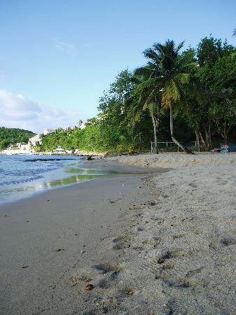 The Beach at East Winds Inn