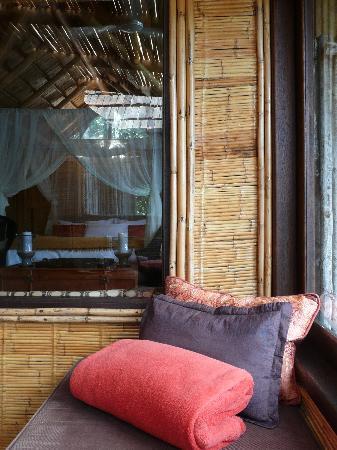 The Phantom Forest Eco-Reserve: Tree suite interior
