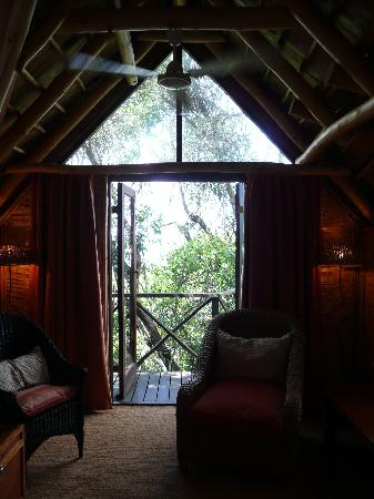 The Phantom Forest Eco-Reserve: Tree suite bed room