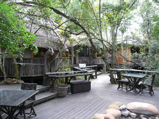 The Phantom Forest Eco-Reserve: Restaurant