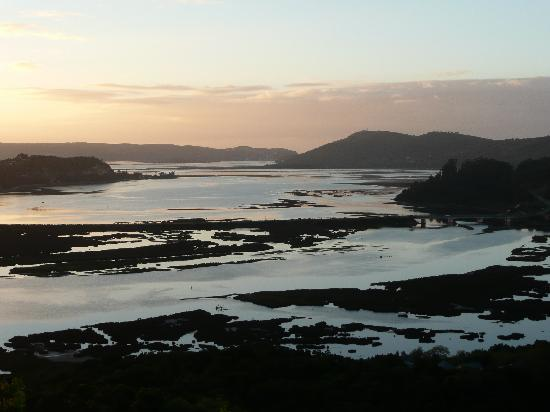 The Phantom Forest Eco-Reserve: View from tree suite at dawn