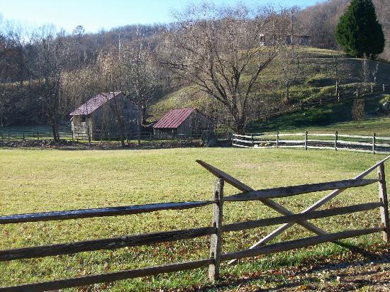 The Inn at Little Washington: Gorgeous countryside