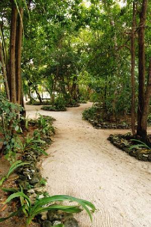 Deep Blue Resort Utila: the grounds