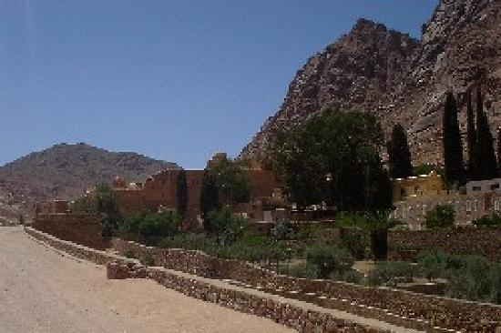 St. Catherine's Monastery: The walk up to the monastery.