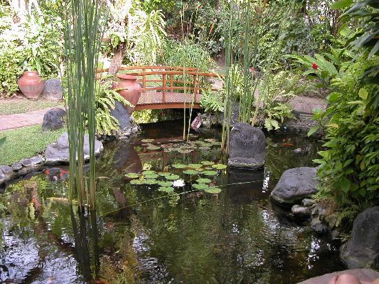 Gardens path picture of poppies bali kuta tripadvisor for Koi pond bridge
