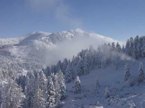 Sundance Grande Mountain Resort & Spa: View outside the window