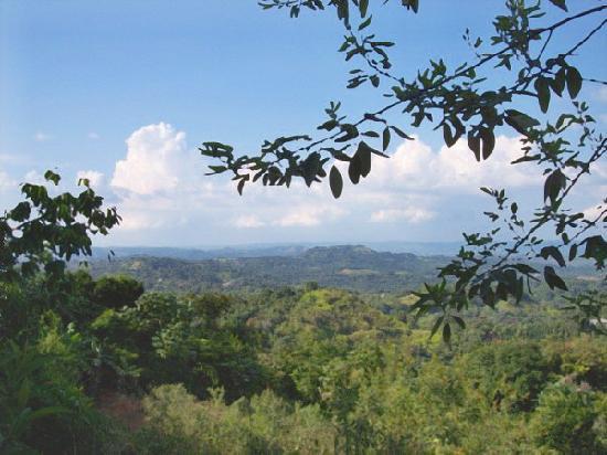 Maravilla Guesthouse: Mountain Views