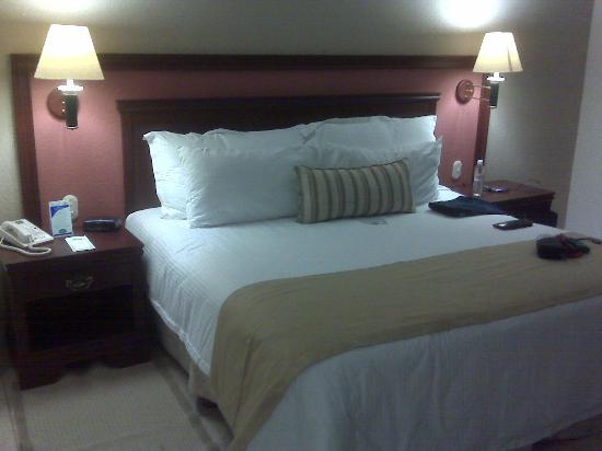 Villa Florida Hotel & Suites: Bed