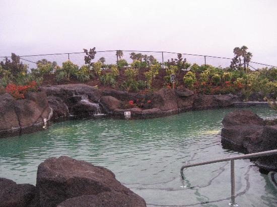 Outrigger Waikoloa Beach Villas: pic8
