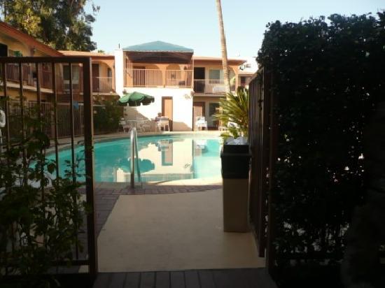 Hollywood City Inn: the pool