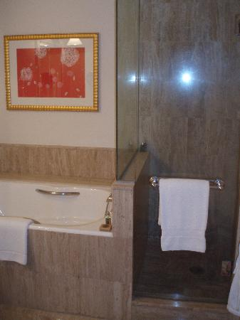 Four Seasons Hotel Mexico City : Seperate shower and tub