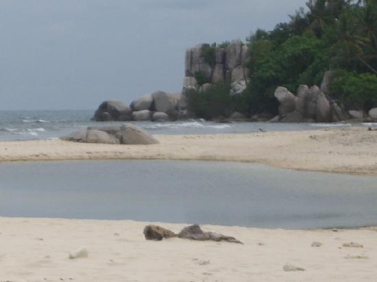 Nikoi Island : Beach
