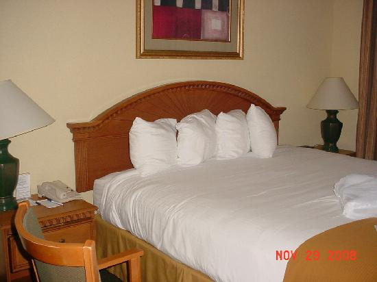 Holiday Inn Express Hotel & Suites - Veteran's Expressway: Soft king bed
