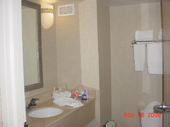 Holiday Inn Express Hotel & Suites - Veteran's Expressway: Clean, small bathroom