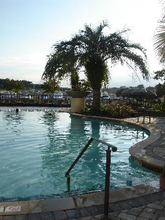 Marina Inn at Grande Dunes: The Infinity Edge Pool - Palm Ambience Included