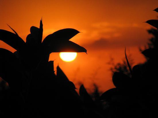 Gardenia Hotel: Sonnenuntergang vom Balkon aus