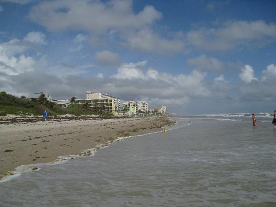 Ocean East Resort Club : Looking to the south