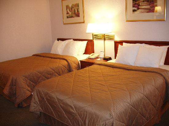 Comfort Inn Northeast: Bed2