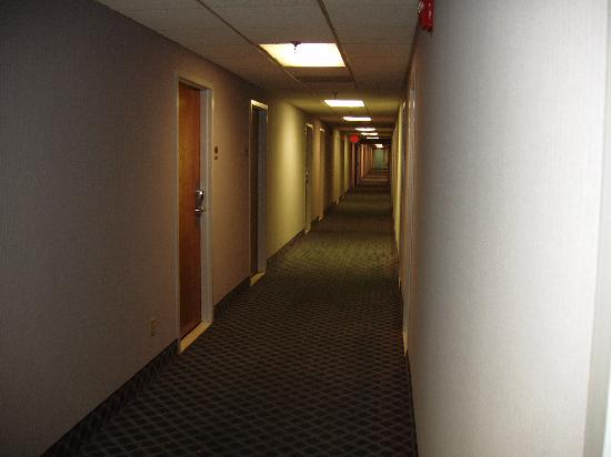 Comfort Inn Northeast: hall