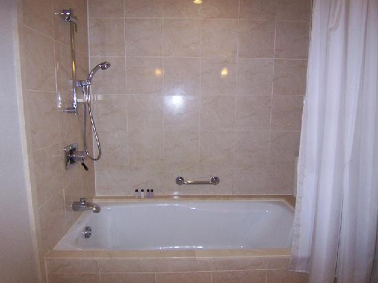 Grand Hyatt Incheon : Bathroom Shower
