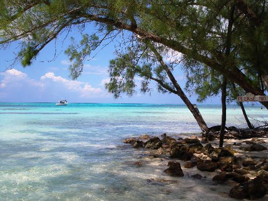 Grand Cayman: RUM POINT - Probably the most relaxing place on the planet!