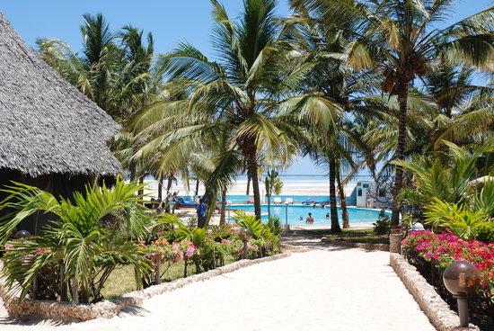 Jacaranda Beach Resort: jacaranda