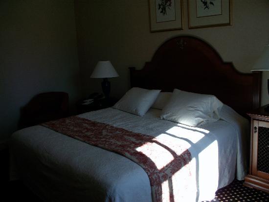 French Quarter Inn: My standard king room
