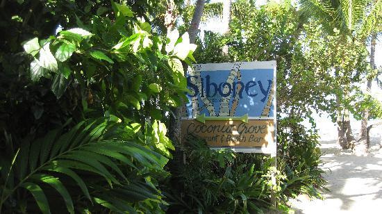 Siboney Beach Club: enter here