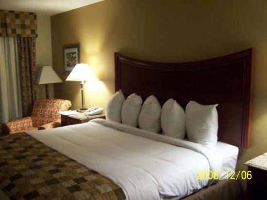 Atkinson Inn & Suites: Bed