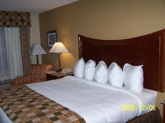 Atkinson Inn & Suites照片