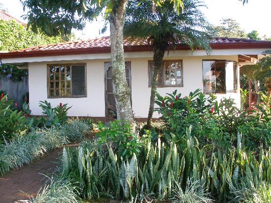 Posada Mimosa: our casita in the garden